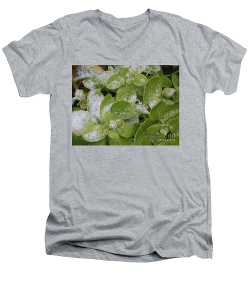 Men's V-Neck T-Shirt featuring the photograph First Dusting Of Snow Plant by Rockin Docks Deluxephotos
