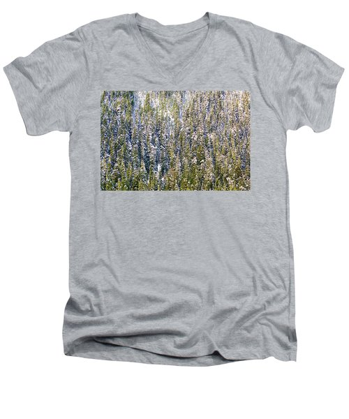 First Snow On Trees Men's V-Neck T-Shirt