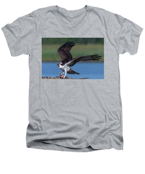 Fish For The Osprey Men's V-Neck T-Shirt