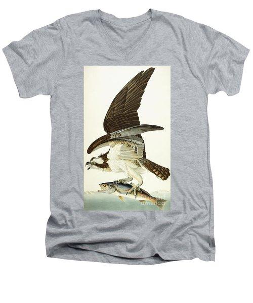 Fish Hawk Men's V-Neck T-Shirt by John James Audubon