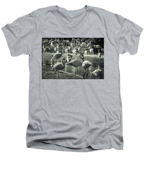 Flamboyance Of Flamingos Men's V-Neck T-Shirt by Jason Moynihan