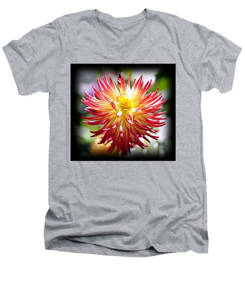 Men's V-Neck T-Shirt featuring the photograph Flaming Beauty by AJ Schibig