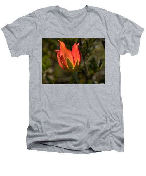 Flaming Beauyy Men's V-Neck T-Shirt by Uri Baruch