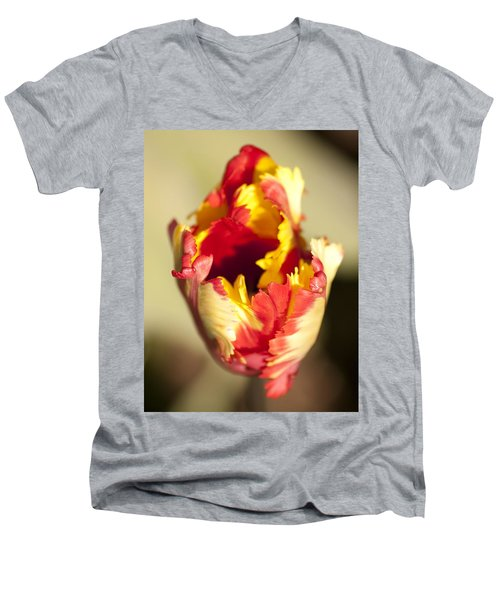 Flaming Parrot Men's V-Neck T-Shirt