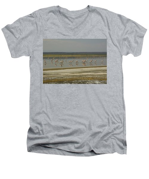 Flamingos Magadi Hot Springs Kenya Men's V-Neck T-Shirt by Patrick Kain