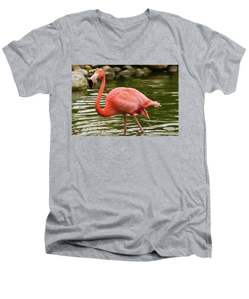 Flamingo Wades Men's V-Neck T-Shirt