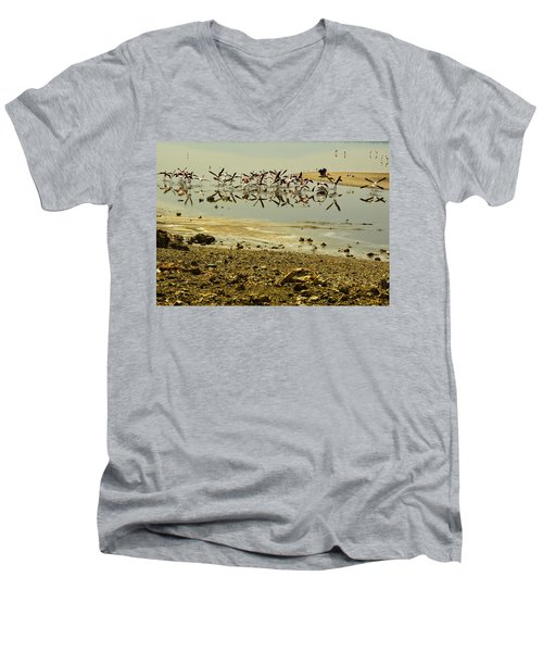 Flamingos Men's V-Neck T-Shirt by Patrick Kain
