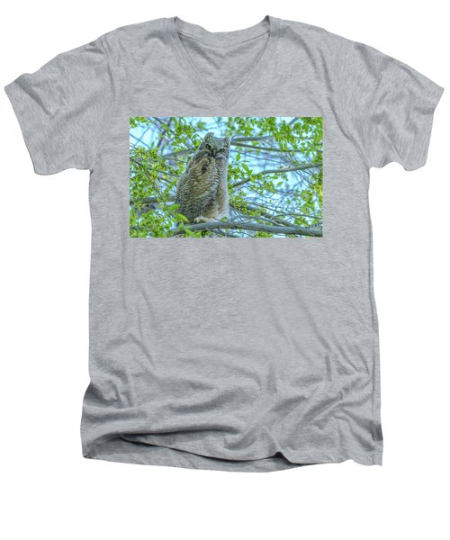 Fledgling Moment At Sundown Men's V-Neck T-Shirt