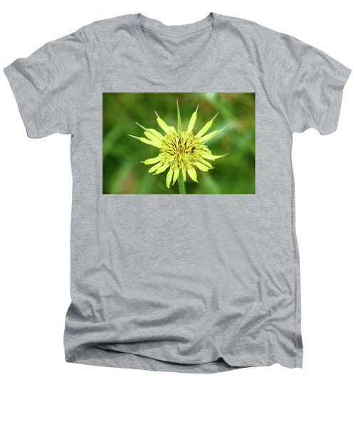 Fll-4 Men's V-Neck T-Shirt