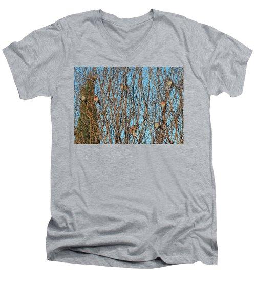 Flock Of Finches Men's V-Neck T-Shirt