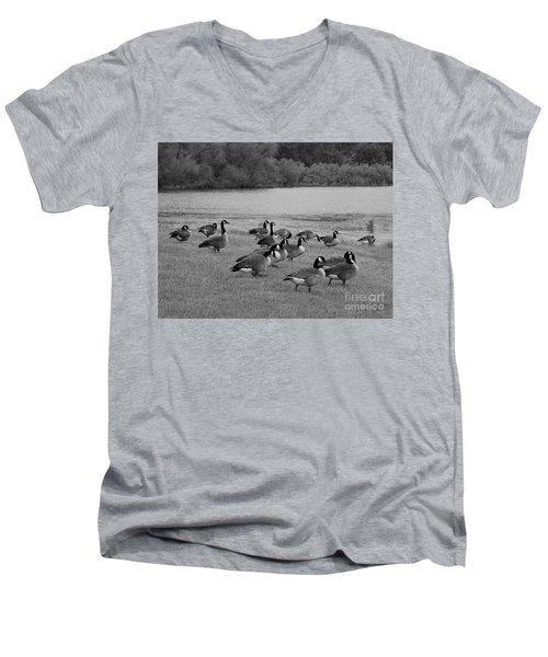 Flock Of Geese Men's V-Neck T-Shirt