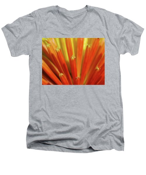 Floral Fireworks Men's V-Neck T-Shirt