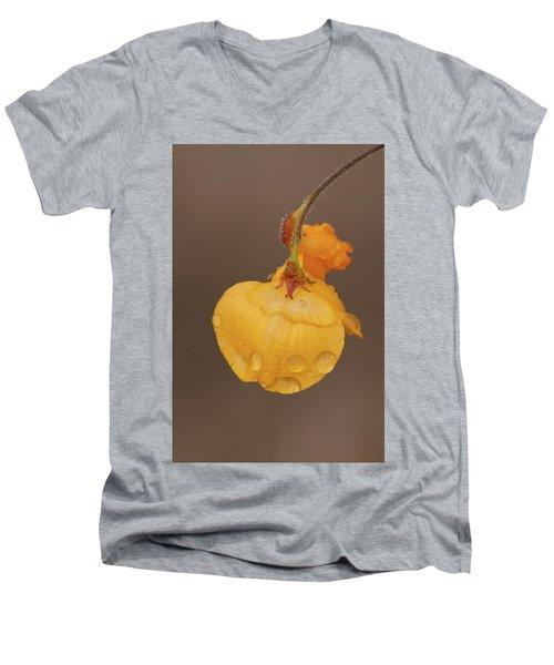Florida Alicia Men's V-Neck T-Shirt