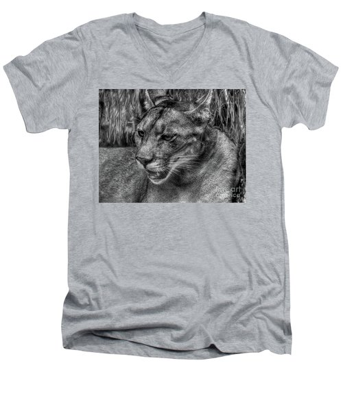 Men's V-Neck T-Shirt featuring the photograph Florida Panther by Myrna Bradshaw