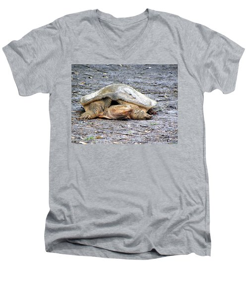 Men's V-Neck T-Shirt featuring the photograph Florida Softshell Turtle 001 by Chris Mercer