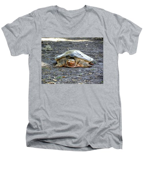 Men's V-Neck T-Shirt featuring the photograph Florida Softshell Turtle 002 by Chris Mercer
