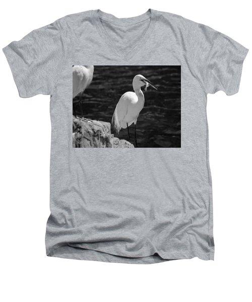Florida White Egret Men's V-Neck T-Shirt