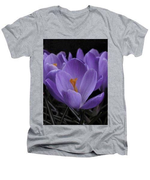 Flower Crocus Men's V-Neck T-Shirt