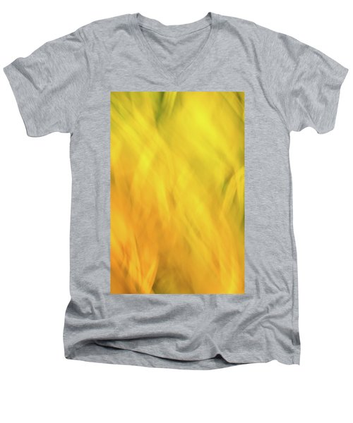 Flower Of Fire 2 Men's V-Neck T-Shirt