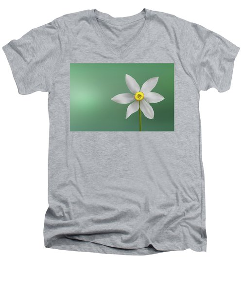 Flower Paradise Men's V-Neck T-Shirt by Bess Hamiti