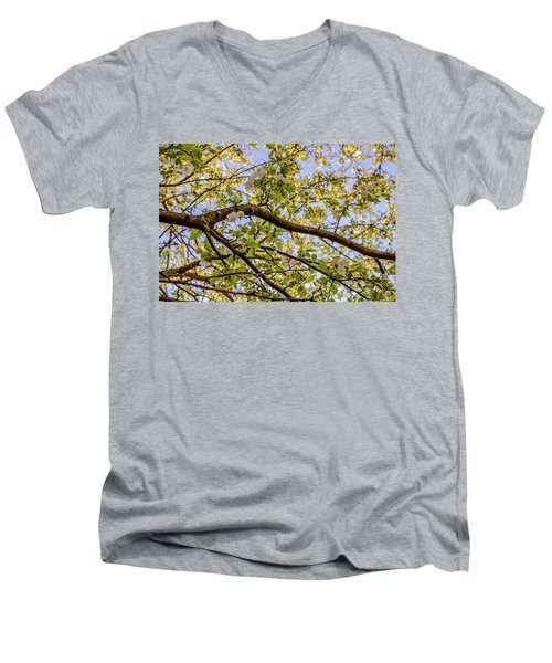 Flowering Crab Apple Men's V-Neck T-Shirt