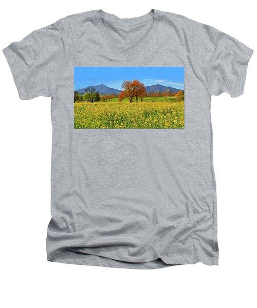 Flowering Meadow, Peaks Of Otter,  Virginia. Men's V-Neck T-Shirt