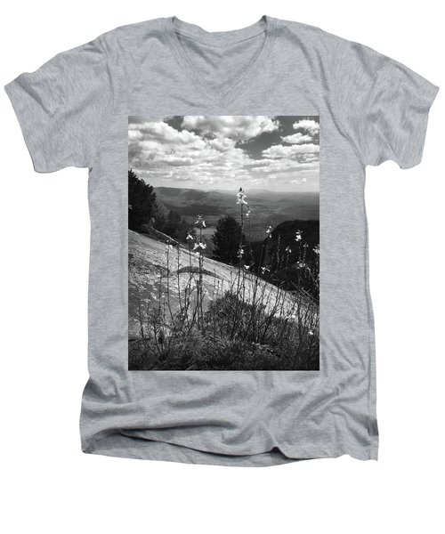 Flowers At The Top Of Table Rock Trail Men's V-Neck T-Shirt by Kelly Hazel
