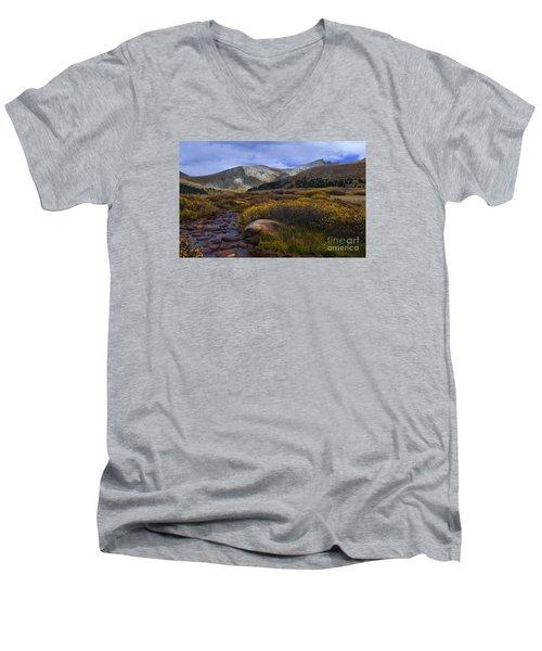 Flowing From Bierstadt Men's V-Neck T-Shirt