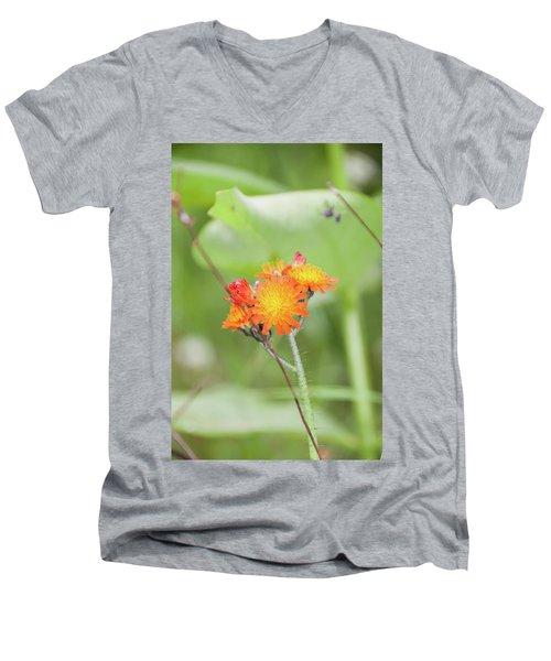 Flp-4 Men's V-Neck T-Shirt