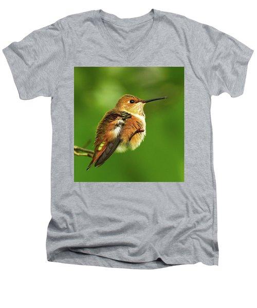 Fluff Ball Men's V-Neck T-Shirt by Sheldon Bilsker