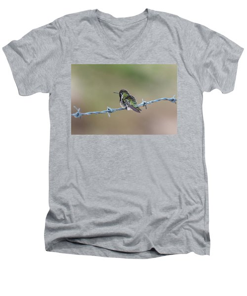 Fluffy Hummingbird Men's V-Neck T-Shirt