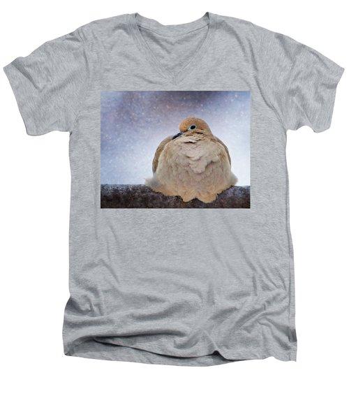 Fluffy Mourning Dove Men's V-Neck T-Shirt