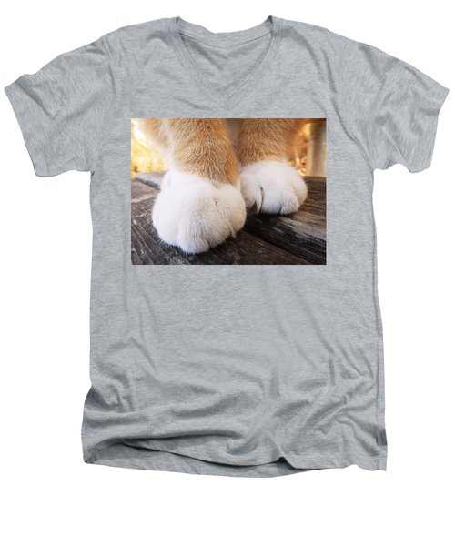 Fluffy Paws Men's V-Neck T-Shirt
