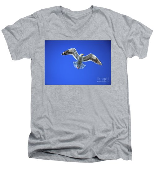 Flying Gull Men's V-Neck T-Shirt by Robert Bales
