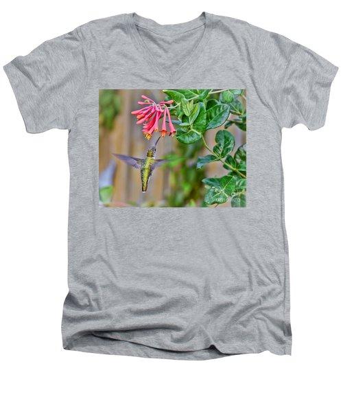 Flying Jewel Men's V-Neck T-Shirt