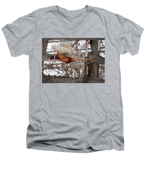 Men's V-Neck T-Shirt featuring the photograph Flying Pheasant by Wesley Aston