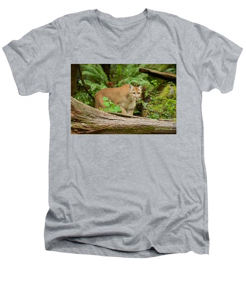 Focal Point Men's V-Neck T-Shirt