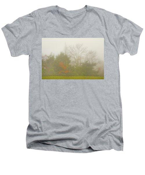 Fog In Autumn Men's V-Neck T-Shirt
