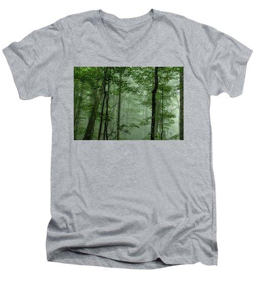 Fog In The Forest Men's V-Neck T-Shirt