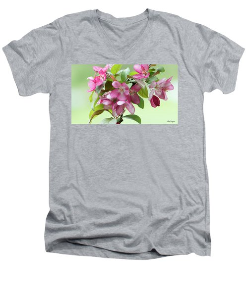 For The Beauty Of The Earth Men's V-Neck T-Shirt by Skip Tribby