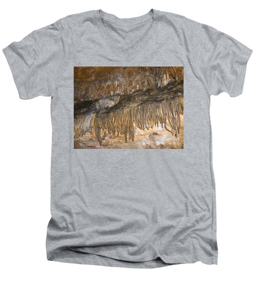 Force Of Nature Men's V-Neck T-Shirt