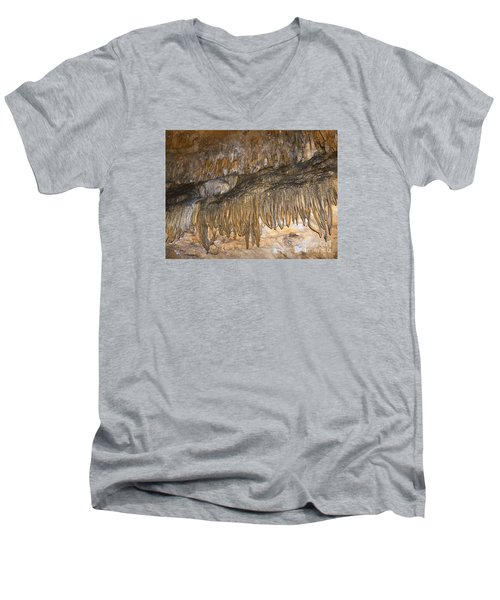 Force Of Nature Men's V-Neck T-Shirt