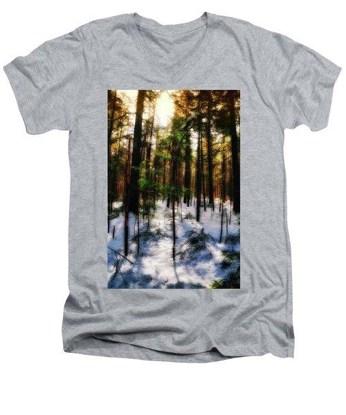 Forest Dawn Men's V-Neck T-Shirt