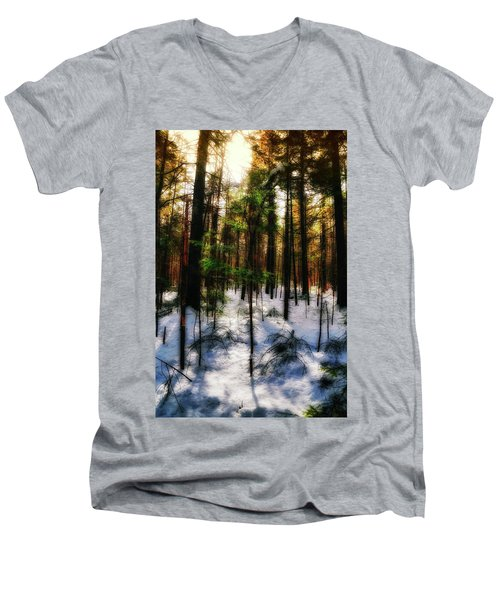 Forest Dawn Men's V-Neck T-Shirt