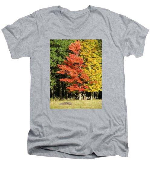 Forest Door Men's V-Neck T-Shirt