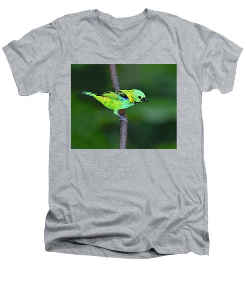 Forest Edge Men's V-Neck T-Shirt by Tony Beck