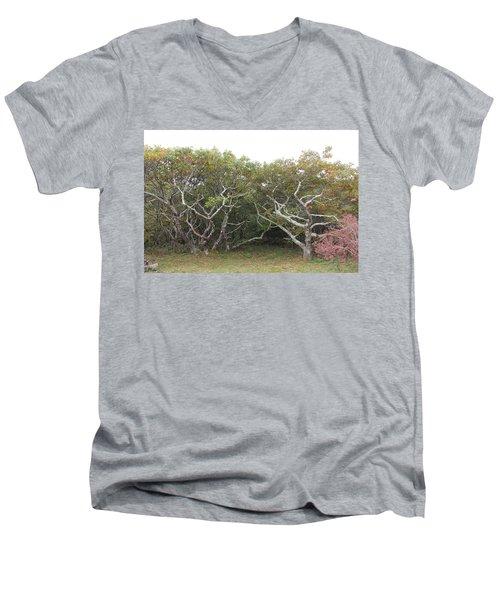 Forest Entry Men's V-Neck T-Shirt