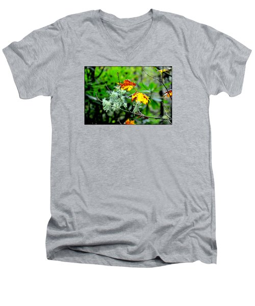 Forest Little Wonders Men's V-Neck T-Shirt by Tanya Searcy