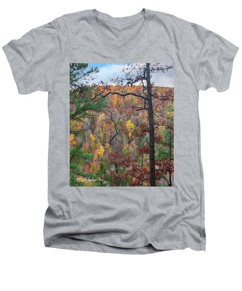 Forest Men's V-Neck T-Shirt by Tim Fitzharris