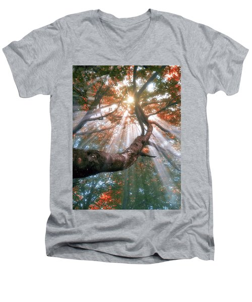 Forest With Fog And Sun Rays Men's V-Neck T-Shirt